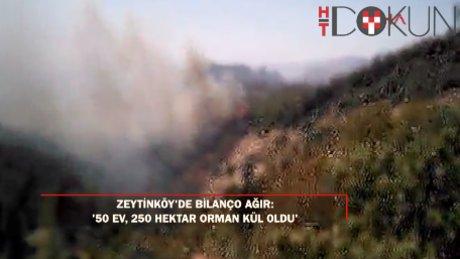 Muğla Zeytinköy'de 50 ev ve 250 hektar orman kül oldu