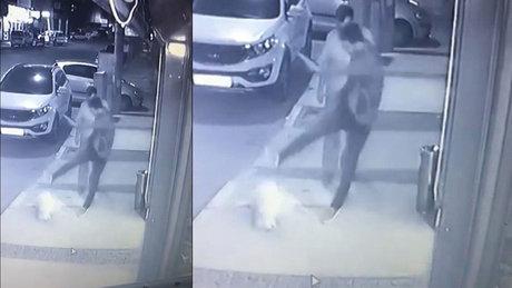 İzmir Aliağa'da kaldırımda yatan köpeğe tekme kamerada