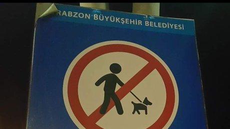 Trabzon'da tepki çeken levha