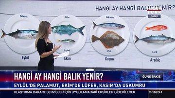 Hangi ay hangi balık yenir?