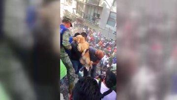 Meksika'daki deprem sonrası enkaz altından köpek kurtarıldı
