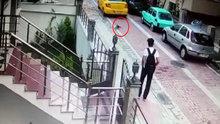 Taksi şoförü köpeği böyle ezdi geçti