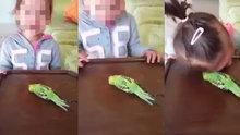 """""""Kuşu sen öldürdün"""" diyerek kızını ağlatan anneye, tepki yağdı"""