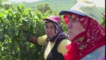 'Üzümü yiyoruz ama şarap hiç içmedik'