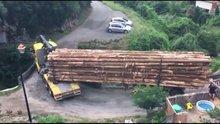 Ağaç kütüklerini virajlı köprüden geçiren usta şoför