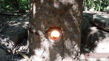 Doğadaki malzemelerden fırın yaptı!