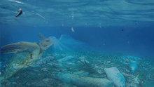 Denizlerdeki plastik atık tehlikesi