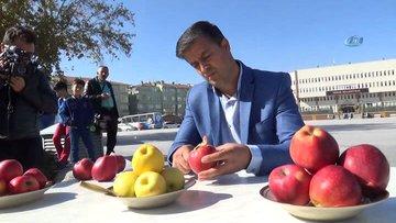 Bir elmadan 5 metre kabuk çıkaran adam Guinnes'e aday