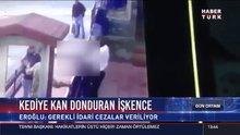 Erzincan'da kediye yapılan işkence kamerada