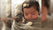 Yastığını kedisiyle paylaşan sevimli bebek