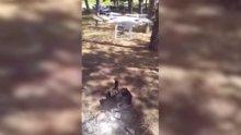 Drone'la mangal körükleyen piknikçiler