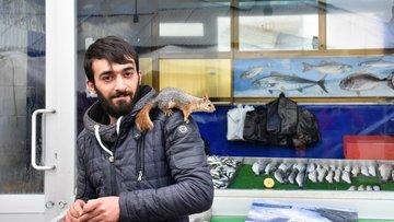 Balıkçı ile sincapların dostluğu