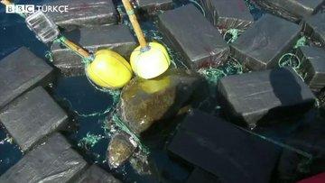 Deniz kaplumbağası üzerinde 816 kg kokain bulundu