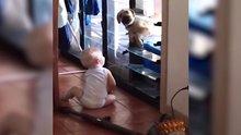 Soğukta kalan köpeği eve alan bebek