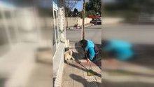 Temizlik işçisinin sokak köpeğine şarkı söylemesi çok izlenenler arasına girdi!