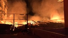 Kocaeli'de kağıt fabrikasında yangın!