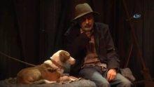 Hayvan barınağından tiyatro sahnesine