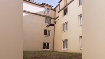 Üçüncü kattan aşağı atladı
