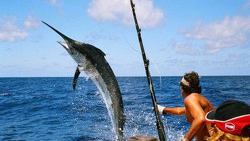 Balık Avlama Teknikleri