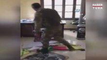 TSK, teröristlerin 'girilmez' dediği yerde! Elebaşının posterleri indirildi