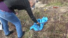 Trabzon'da esrarengiz hayvan ölümlerinde zehirleme iddiası