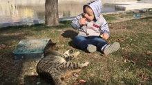 Kediyle simidini paylaşan çocuğun sevimli halleri