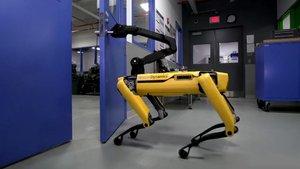 Köpek robot 'SpotMini' şimdi de kapıları açabiliyor