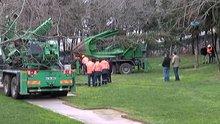 Maçka Parkındaki ağaçlar sökülmeye başlandı