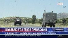 Diyarbakır'da terör operasyonu