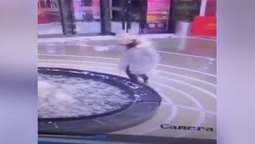 Cep telefonuna bakarak yürüyen kadın süs havuzuna böyle düştü