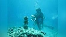 Dalgıçın su altındaki inanılmaz şovu