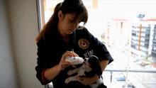 Kapıkule'de yavru köpek operasyonu