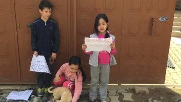 İlkokul öğrencisi çocuklardan sokak hayvanları için broşür