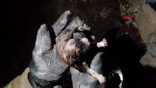 Kuyuda doğuran köpek ve 8 yavrusunu itfaiye ekibi çıkardı