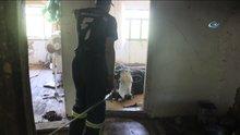 Evin içinde inek kurtarma operasyonu