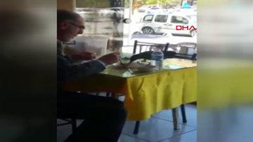 Yemeğini karga ile paylaşan hayvansever