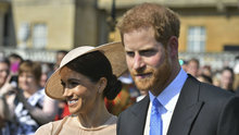 Prens Harry'yi düğün sonrası katıldığı ilk davette arı soktu
