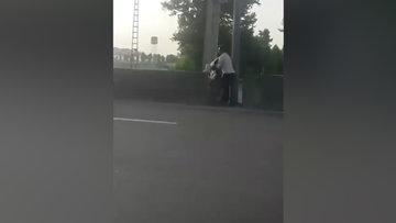 Canını hiçe sayıp otoyolun kenarında mahsur kalan köpeği kurtardı