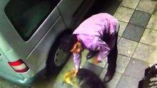Yine hayvana şiddet! Sokak köpeğini defalarca yumrukladı