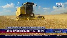 Tarım üzerindeki büyük tehlike