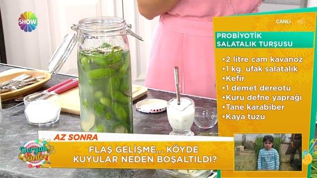 Probiyotik salatalık turşusu