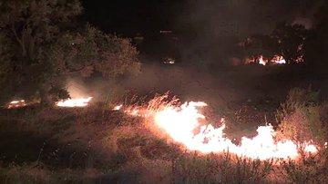 Bodrum'da tarım arazisi ve otluk alanlar yandı