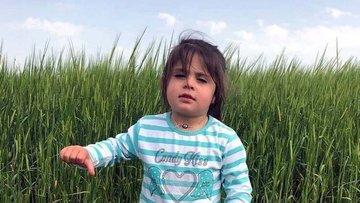 Baro Başkanı Artuk: Leyla'nın ölümü organize bir cinayet