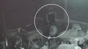 3 gün arayla 4 kurbanlık hayvan çaldılar... O anlar kamerada