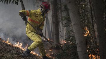 Avrupa alev alev! İspanya ve Portekiz orman yangınlarıyla mücadele ediyor
