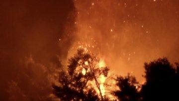 Eğriboz Adası'nda yangın