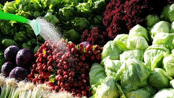 Sebze yemek kanser riskini azaltıyor