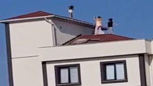 Çatıya bakanlar gözlerine inanamadı