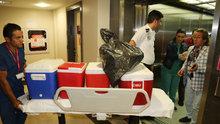 Gurbetçi kadının organları üç hastaya umut oldu