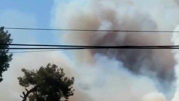 Antalya Kumluca'da orman yangını